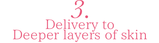 3.Delivery to deeper layers of skin